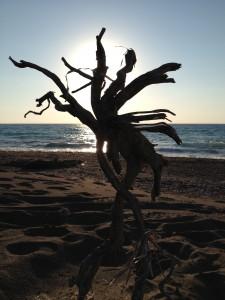 strandskulptur